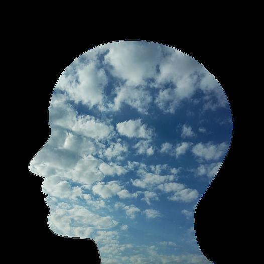 © Pixabay. Ce que l'on a appris à propos du système réticulé-activateur, des schémas de pensées et de la conscience.