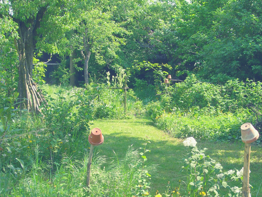 inspiration jardins sauvages, jardin naturel