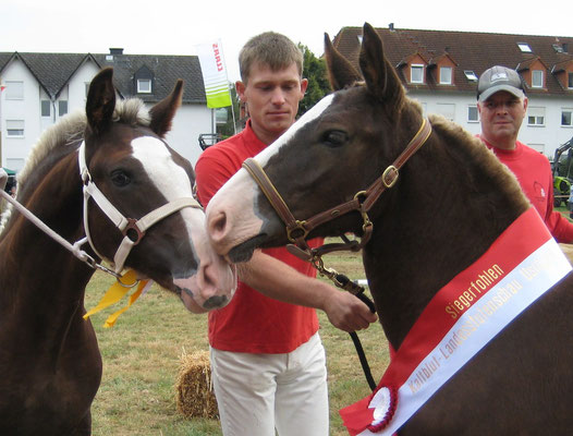 Gesamtsiegerfohlen Waleria und Siegerhengstfohlen Memphis von Melos (Züchter und Besitzer Thomas und Diana Frank)