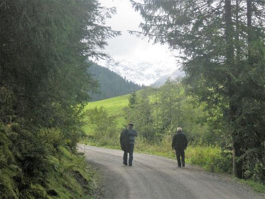 Wanderweg Gamskogelhütte Westendorf in Tirol/Österreich