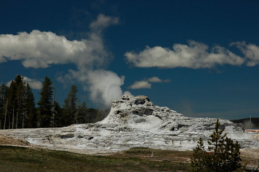 Geysire in Yellowstone, Yellowstone National Park, Upper Geyser Basin