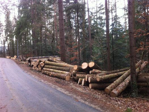 Rundholz Forstwirtschaft Schafmandl