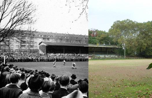 Gestern Heute, Altes Stadion Köln, VfL Köln 1899 Tribüne