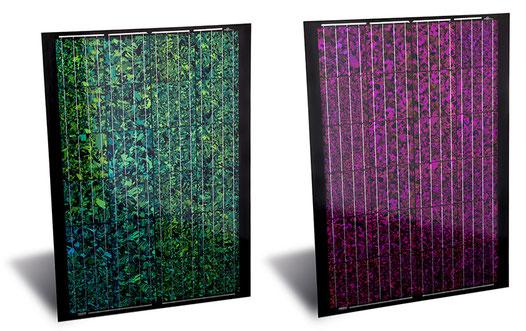 Farbiges Solarmodul von Axsun