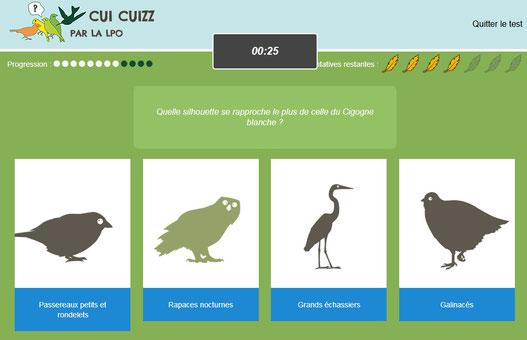 Jeu pédagogique pour reconnaître les oiseaux