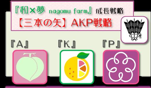 和×夢 nagomu farm成長戦略【AKP戦略】