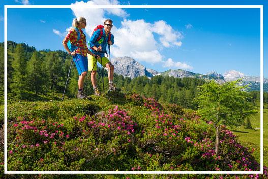 Wandern Bergsteigen Radstadt Radfahren Aktivurlaub Sommer