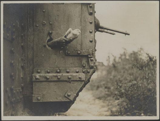 Start einer Brieftaube aus einem Panzer im 1. Weltkrieg