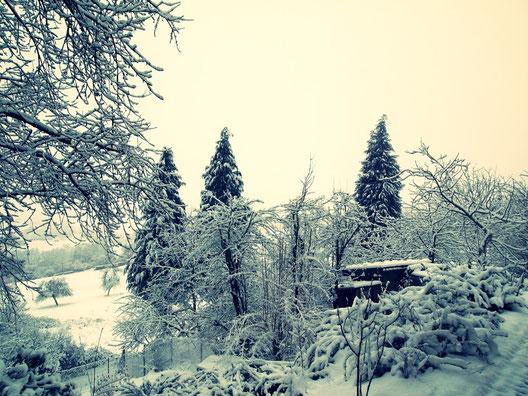 Sooooo viel Schnee heute!