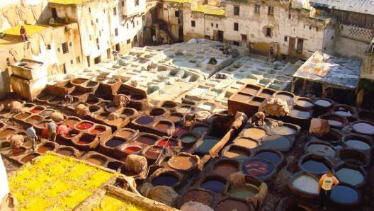 モロッコ 革 工場 見学