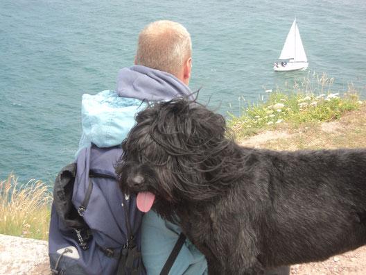 Ferienhaus Bretagne mit Hund, Haustiere willkommen und kostenlos