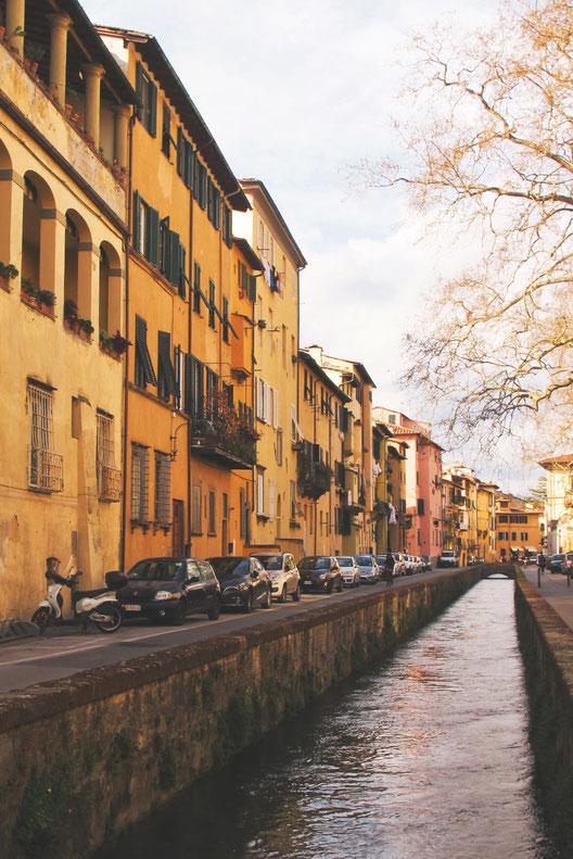 BIGOUSTEPPES ITALIE LUCQUES