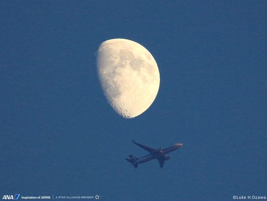 ANAさんのサイトから(先月、成田空港で撮影したお月様と飛行機だよ)