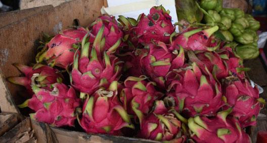 Pitaya Frucht