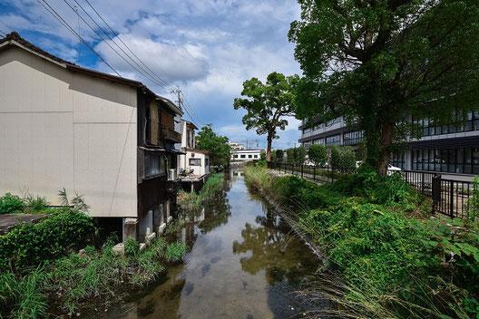 佐賀市内の至るところを流れる水路