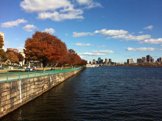 ボストンの街中には自然が多く、歩いているだけでも楽しい