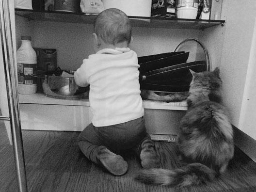 I Bambini E Il Gatto Siberiano Benvenuti Su Dellenevisiberiane