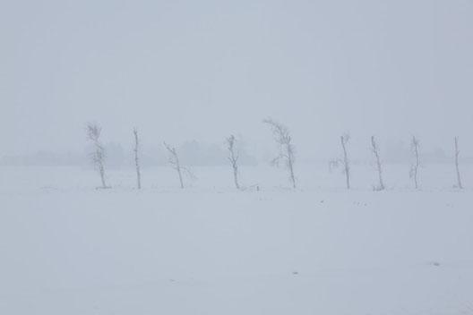 #北海道 #夕張 #冬