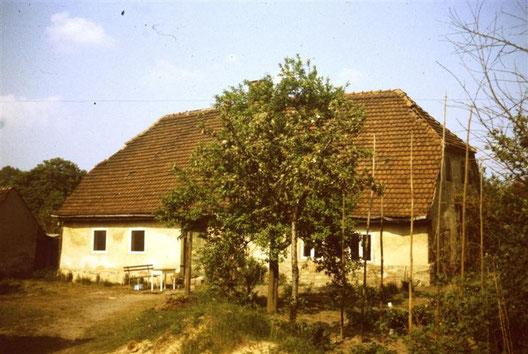Grundstück Straupitz Nr. 146. Zustand 1988.