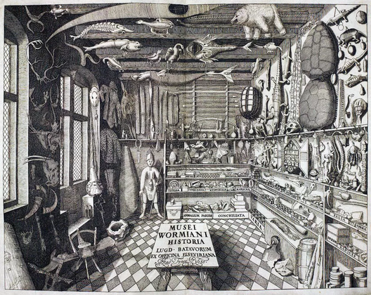Cabinet de curiosités, imaginaire