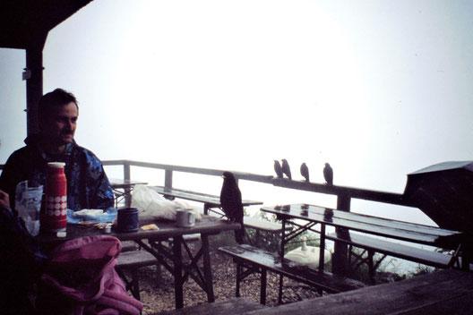 Wanderung Schellenberger Eishöhle, Nebel, Berchtesgaden