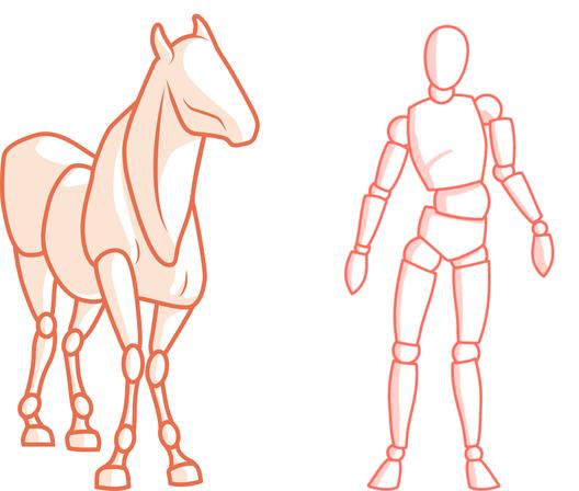 Einfluss der Körperhaltung des Reiters auf sein Pferd.