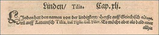 Aus Adamo Lonicero, Neuw Kreuterbuch von 1573