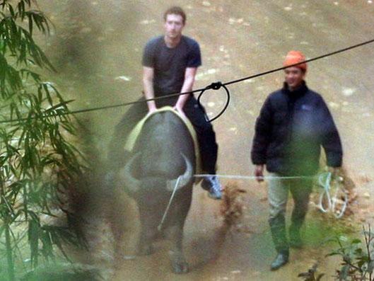 Am ersten Weihnachtsfeiertag habe sich Zuckerberg auf einer Ökoranch in den Bergen am Büffelreiten versucht.
