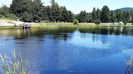 Ruta de senderisme a peu circular - llac d'en Calvet