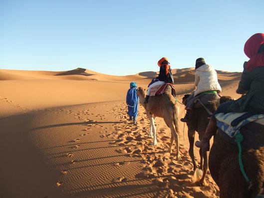 音のない広世界。大な砂漠を、ラクダの背中に揺られて移動します。