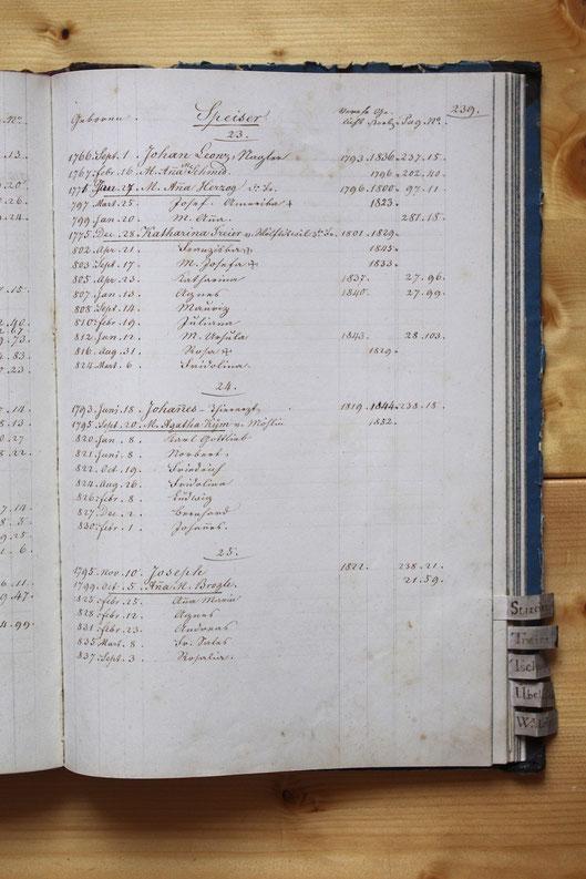 Original-Familienbuch von 1846: Seite 239