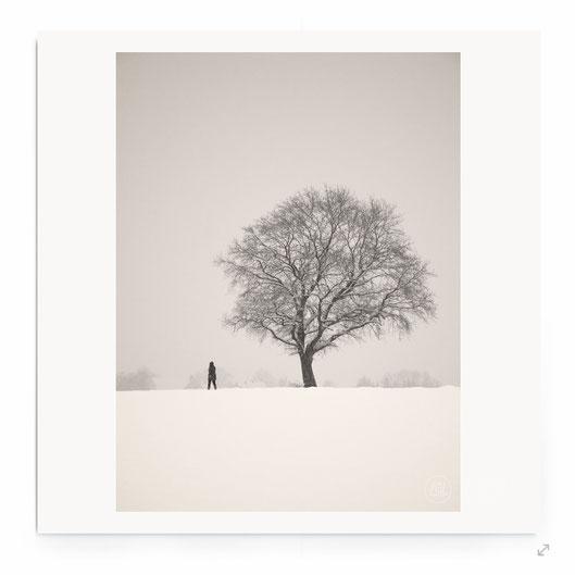 """""""A Winter Walk"""" Fine Art Fotografie. Minimalistische Landschaft mit Baum in schwarz-weiß."""