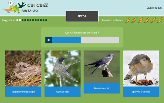 Jeu pédagogique pour apprendre les oiseaux Cui Cuizz 2