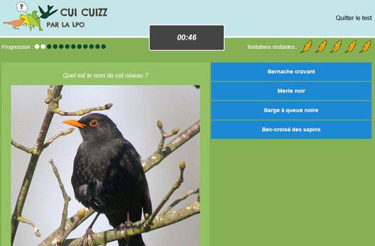 Jeu pédagogique pour apprendre les oiseaux Cui Cuizz