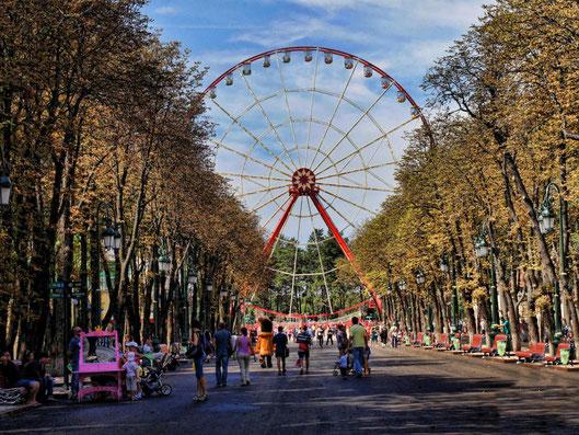 Вид главной аллеи парка Горького в Харькове