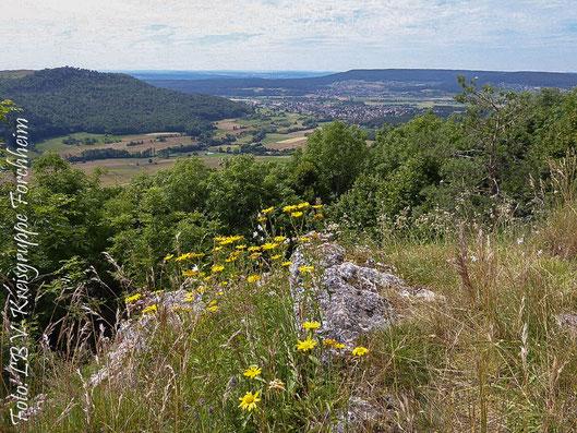 Aussichtspunkt bei Leutenbach (Foto: Ute Wild)
