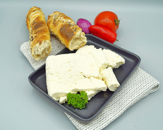 Modern Cheesemaker - Paneer