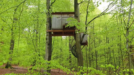 Baumhaus in sieben Metern Höhe.