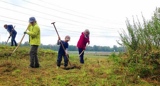 Kinder helfen das Naturschutzgebiet Judenweiher Rheinfelden zu pflegen.