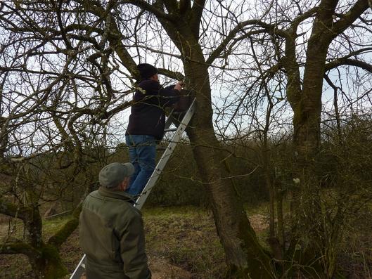 Gunther Brokt und Gerhard Raab in Aktion (Foto: Ute Wild)