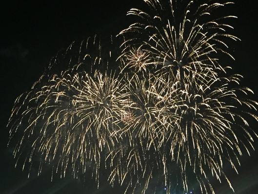 Fireworks in Japan (Image) summer festival event attraction Tachikawa Showa Kinen Park Western Tokyo Tama area Tama Tourism Promotion - Visit Tama