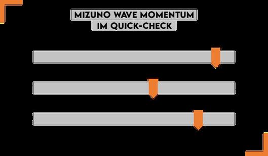 Handballschuhe Mizuno Wave Momentum für Kreisläufer