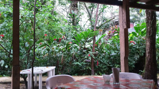 View from my table in the restaurant in El Panchan Don Mucho Palenque jungle