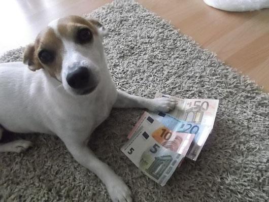 die Chefin hat die Finanzen bei HundKatzHaus fest in der Pfote