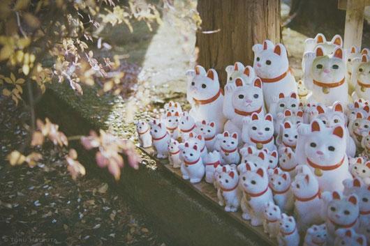 世田谷線の山下駅から招き猫の豪徳寺へ|Nikon F2