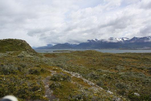 Meer, schneebedeckte Berge, Tundra... Was will man mehr?