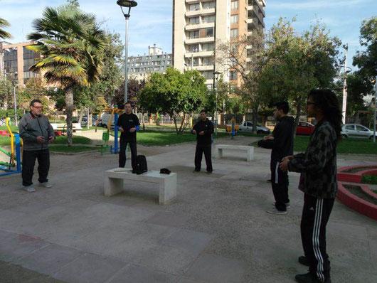 Clases de Tai Chi en San Miguel, Plaza Julieta, Metro Lo Vial