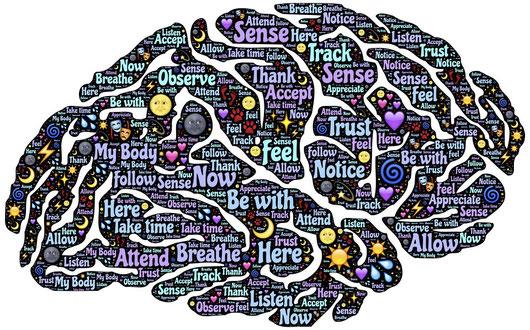 Das menschliche Denken, Prinzip der Adaption, Äquilibration nach Jean Piaget, Jean Piaget, Kognitive Entwicklung