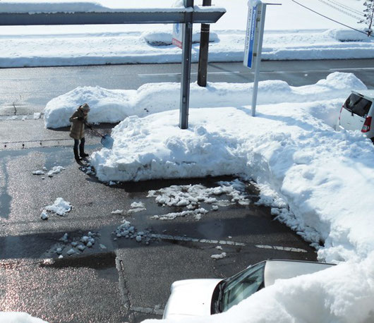 金沢市は大雪の為毎日除雪作業です。 整体院ほしみぐさ駐車場にて