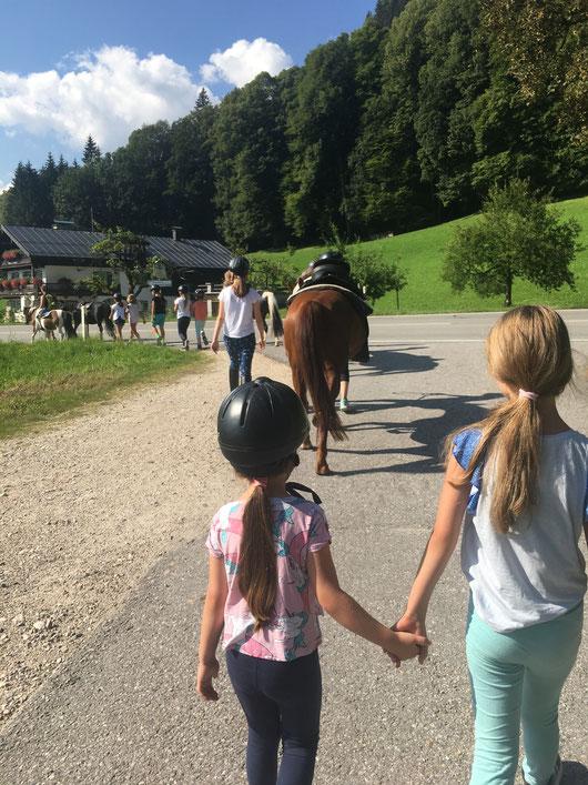 Pferdepicknick Ausflug